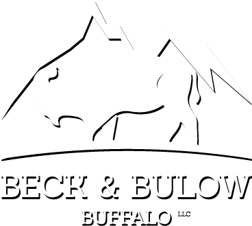 Bison, Wild Boar, Elk, Lamb, Beef Meat Delivered At Your Door