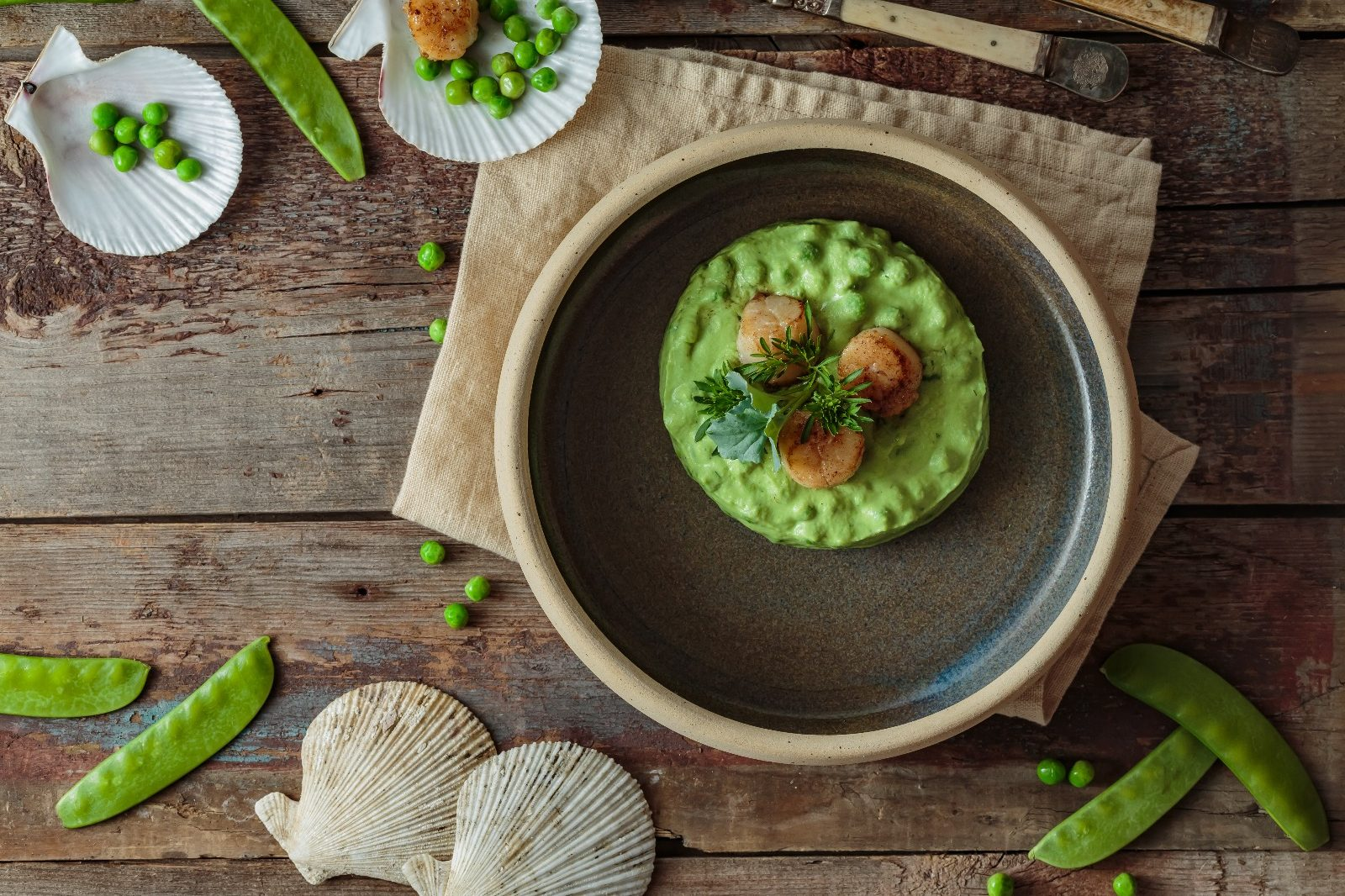 Pan Sear Sea Scallops - A Luxurious And Flavorful Meal - Beck & Bulow