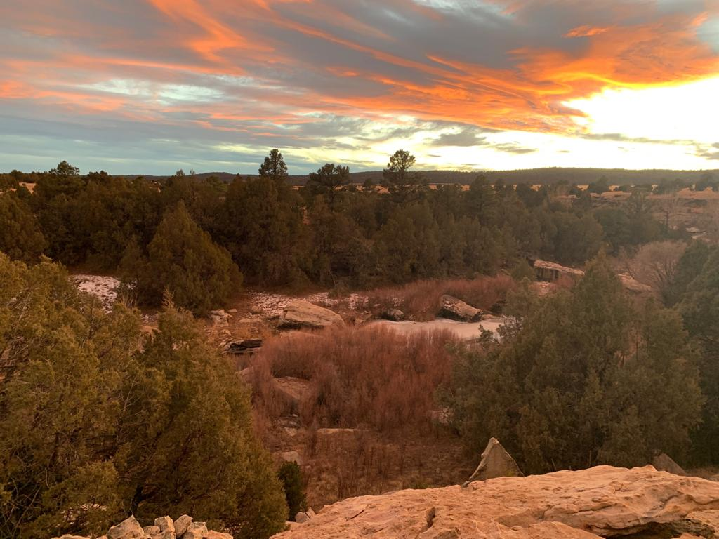 Our Bison Ranch In New Mexico A Truly Incredible Place - Beck & Bulow
